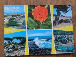 49318 PC: Greetings From ARUBA Holidays Paradise In The Caribbean Aruba. Netherlands, Antilles. - Other