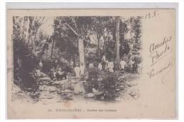 FRANCE -- DIEGO-SUAREZ -- RIZIERE DES CAÏMANS -- CP 1906 -- - Diégo-Suarez (1890-1898)