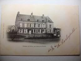 Carte Postale Chateau De Sélins Près D' Aunay En Bazois  (Dos Non Divisé,non Circulée) - Other Municipalities