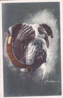 CARD CANE BULLDOG COME DA SCANNER FIRMATA  -FP-N-2 -0882-24697 - Chiens