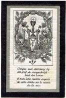 Doodsprentje Anna-Theresia BOSSANT- Vincentius Vandaele - Adinkerke 3 April 1823 - 29 Juni 1885 - Religione & Esoterismo