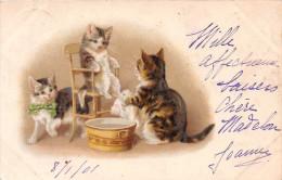 Cpa Fantaisie - Chat Humanisé - Cat - Toilette - Chats