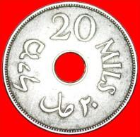 ★RARE: PALESTINE ★ 20 MILS 1927! LOW START ★ NO RESERVE! British Administration (1927-1947) - Israel