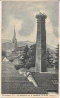 GIROMAGNY 1935 - Les Cigognes Sur La Cheminée Du Brulé - ENCH - - France