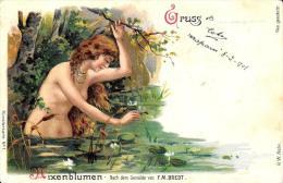 [DC4498] CARTOLINA ILLUSTRATA - GRUSS AUS - MIXEMBLUMEN - NACH DEM GEMALDE VON F. M. BREDT Viaggiata - Old Postcard - Souvenir De...
