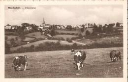 BULLANGE - MANDERFELD (4760) : Panorama. CPSM Rare. - Büllingen