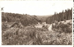 BULLANGE - ROCHERATH - KRINKELT (4761) : Jagdhütte. CPSM Rare. - Büllingen