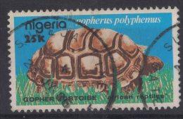 EM79     NIGERIA - TURTLE ,GOLPHERUS POLYPHEMUS - Schildkröten
