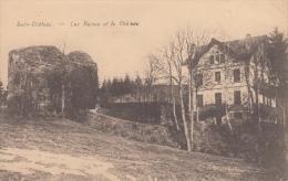 Salm- Chateau  Vielsalm     Les Ruines Et Le Chateau           Nr 5009 - Vielsalm