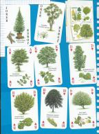 Playcards   Spielkarten    Trees   Baeume - 54 Karten