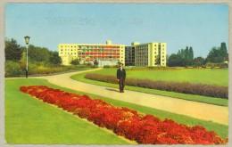 Venlo *** Julianapark De Beerendonck - 1962 - Venlo