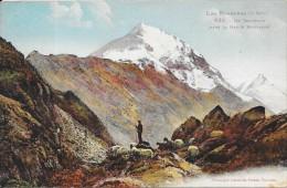 DEPT 65 - CPA COLORISEE - Un Troupeau Dans La Haute Montagne - ENCH - - Sin Clasificación