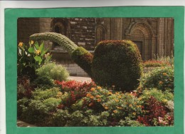 Saint-Claude Capitale De La Pipe (fleurs église) - Saint Claude