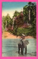 Missions Des Oblats De Marie Immaculée à Ceylan - Traversée De La Rivière Sur Un éléphant - THILL - NELS - Colorisée - Sri Lanka (Ceylon)