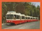 SCHWEIZ, BAHN - SUISSE, TRAIN-Moderner Dreiwagenzug Der Forchbahn-Die Forchbahn Erschliesst Ein Herrliches Wandergebiet - Trains