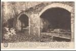 L´Abbaye De Cambron - La Crypte   (Cambron-Casteau - Brugelette) - Brugelette