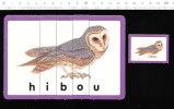 Puzzle 15 X 10 Cm  /  Hibou  /  Animaux Animal Owl Bird Oiseau  /  IM 51/P-4 - Non Classificati