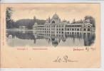 BUDAPEST - PALAIS - DOS UNIQUE - 1.02.1901 - - Hongrie