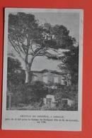 LASALLE - Chateau De CORNELY - Cpa édité Par La Société Du Protestantisme Français : 54 Rue Des Saints Pères Paris 7eme - Ohne Zuordnung