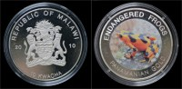 Malawi- 10 Kwacha 2010- Endangered Frogs- Panamanian Gold - Malawi