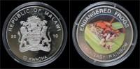 Malawi- 10 Kwacha 2010- Endangered Frogs- Malagasy Rainbow - Malawi