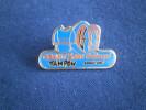PIN´S GEANT 2000 LE TAMPON  Ile De La REUNION - Animaux