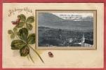 Gruss Aus Meierskappel (Lucerne). Lithographie Im Relief Mit Ortstempel 13.VII.1906. Vorgelaufene Karte - Cartes Postales