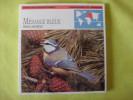 Lot > 25 Fiches éditions ATLAS Oiseaux _ Mésange _ Chouette - Animales
