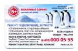 Russia Remrus Penguins - Animals & Fauna