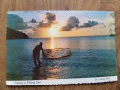 49330 POSTCARD: CARIBBEAN: WEST INDIES: ST. LUCIA: Casting A Fishing Net. - Postcards
