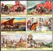 LIEBIG - Série Complète De 6 Chromos - HISTOIRE De La ROUMANIE, ROEMENIE - Texte En Néerlandais -  TBE - Liebig