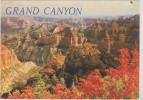 (R) GRAND CANYON NATIONAL PARK , ARIZONA - Lake Powell