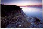 Sverige  -  Insel Gotland - Motiv An Der Küste Bei Lickarshamn - Zweden