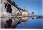 Sverige  -  Insel Gotland - Kalksteinklippen An Der Küste Bei Lickarshamn - Zweden