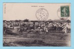 TRUMELET 1913 -- Le Marché + Grosse Animation - Algeria