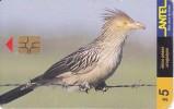 Nº 78 TARJETA DE URUGUAY DE ANTEL DE UN PIRINCHO  (PAJARO-BIRD) (esquina Mordida) - Uruguay