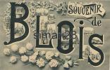 BLOIS - SOUVENIR DE BLOIS - Blois