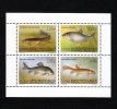Kirgisistan ** Block 6 Fische - Kyrgyzstan