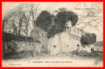Dept 29    Gouesnou       Ruines Du Chateau De Mesléan    ( Scan Recto Et Verso) - France