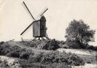 Coxyde Sur Mer Le Vieux Moulin Wind Mill - Belgique