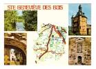 91 Sainte Genevieve Des Bois Carte Geographique Michelin Donjon Grotte Chapelle Russe Bords Orge - Sainte Genevieve Des Bois