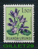TIMBRES - RUANDA-URUNDI - 2 FLEURS - SCHIZOGLOSSUM & GERBERA - TIMBRES NEUF - - Ruanda-Urundi