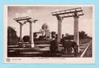 CASABLANCA -- Le Parc LYAUTEY N° 31 D - Casablanca
