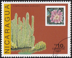 NICARAGUA - Scott #1639 Echinocereus Engelmanii (*) / Used Stamp - Cactusses