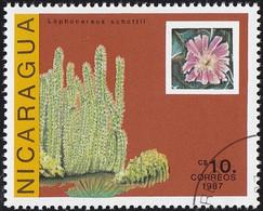 NICARAGUA - Scott #1639 Echinocereus Engelmanii (*) / Used - Cactus