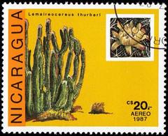 NICARAGUA - Scott #1642 Saguaros (*) / Used Stamp - Cactusses