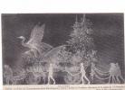 25315 PARIS -11 NOVEMBRE 1920 FETES CINQUANTENAIRE REPUBLIQUE -cortege Lumieres Electriques Char Alsace Dilly