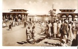 Real Photo Unidentified Africa Scene - Other