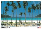 Coconut Palms, Beach, Pulau Redang, Terengganu, Malaysia - Yacine 37501 Unused, 17 X 12 Cm - Malaysia