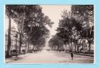 MALAGA -- TBE -- Alameda De Alfonso XIII - Malaga
